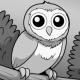 enwhe's avatar