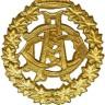 commandosolo