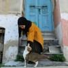 Avatar of مريم محمد