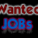 Profile picture of wantedjobs