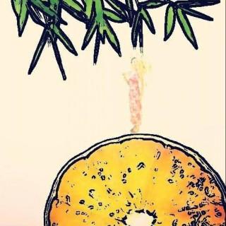 orangebamboo