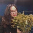 Nguyễn Phương Hoa