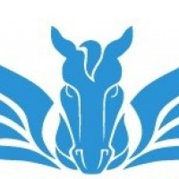 Pegasus Charters