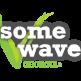 Wholesome Wave Georgia