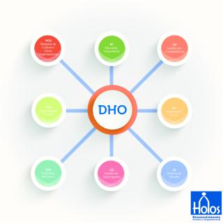 Blog Holos DHO