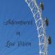 adventuresinlowvision