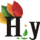 Hiya India