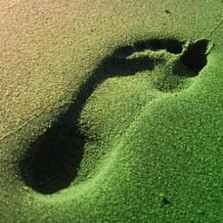 greenl4l