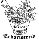 Webmaster Erboristeria Pucci