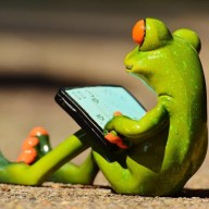 _Prof_Frog_