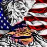Grumman Tomcat