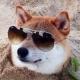 Jan Dvorak's avatar