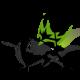 SDchk's avatar