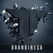 Brandinesa1
