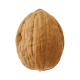 The Nut