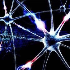 Avatar for biotoxic from gravatar.com