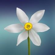 Photo of Hương Ly