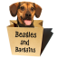 Jessica Shipman | Beagles & Bargains