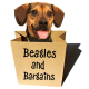 Jessica Shipman | Beagles and Bargains