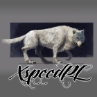 View XspeedPL's Profile