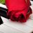 rosemiaru
