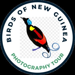 Papua Birding Trip