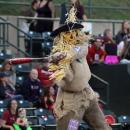 The Scorecrow
