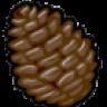 ChocolatePinecone