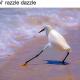 NataliaD