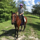 Riding Writer