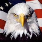 View eagle4life69's Profile