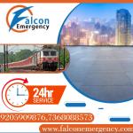 falconemergency
