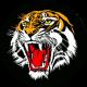 Profile picture of Tigerman42