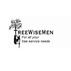 Avatar of treewisemensc