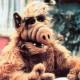 Profile picture of chrisnowak