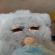View ja450n_curse's Profile