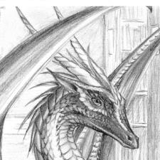 Avatar for dragondm from gravatar.com