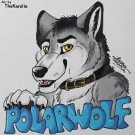 PolarDraknoir