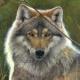 werewolf2150