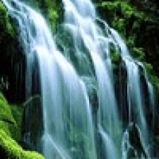 Avatar for frispete from gravatar.com