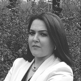 Arabulucu ve Avukat Ayşe Ceren Ertürk