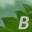 biodika blog