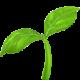 greengrow