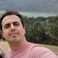 Shahrokh Moghimi