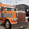 CarCat The Trucker