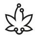 CBD Connect