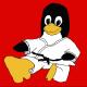 Steven Rostedt (VMware)'s avatar
