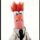 Muppet9010