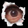Noslippin