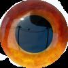 ImgViewerPlus - Ver. 0.7 - last post by CIAvash